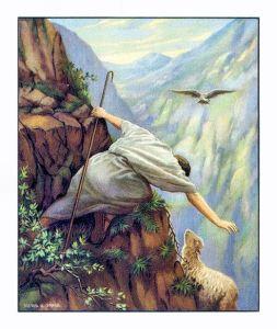 The Lost Sheep A U Soord